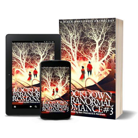 Lockdown_Paranormal_Romance_3